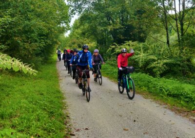 Alpe-Adria - grupa na ścieżce rowerowej